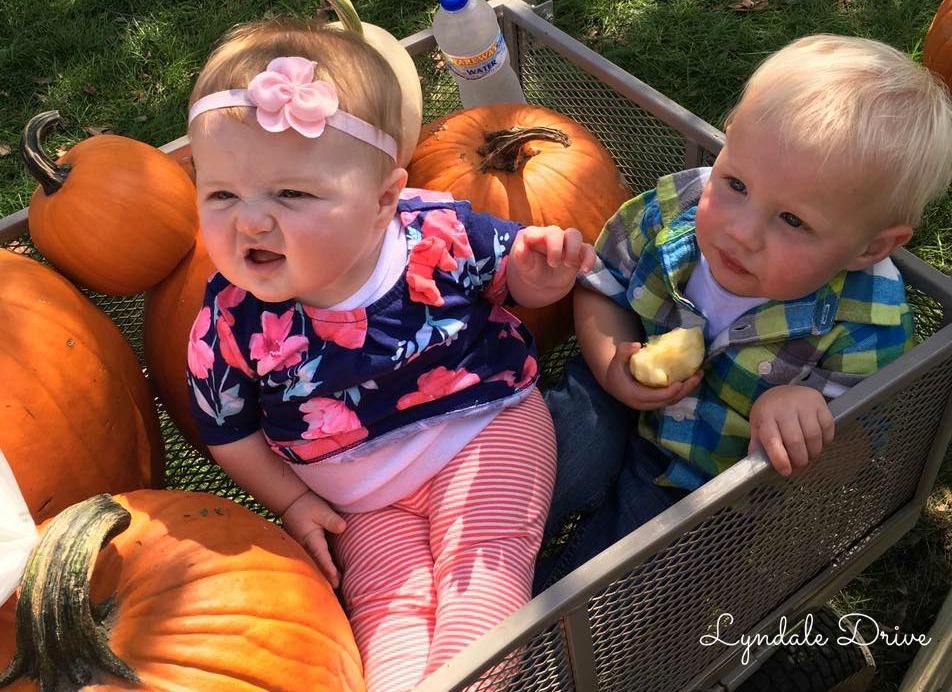 cutest-pumpkins-ever