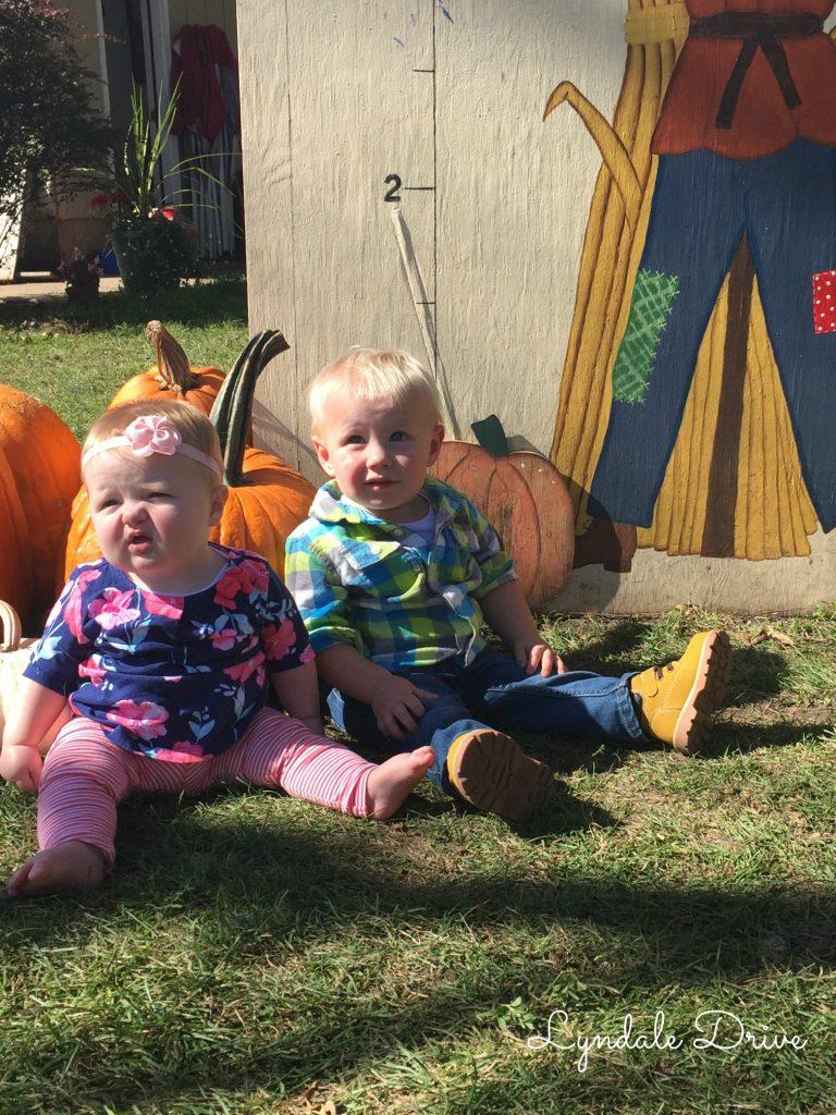 cute-pumpkins